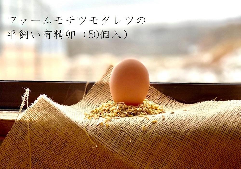 ファームモチツモタレツの平飼い有精卵(50個入)