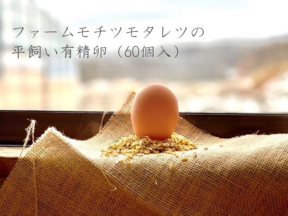 ファームモチツモタレツの平飼い有精卵(60個入)