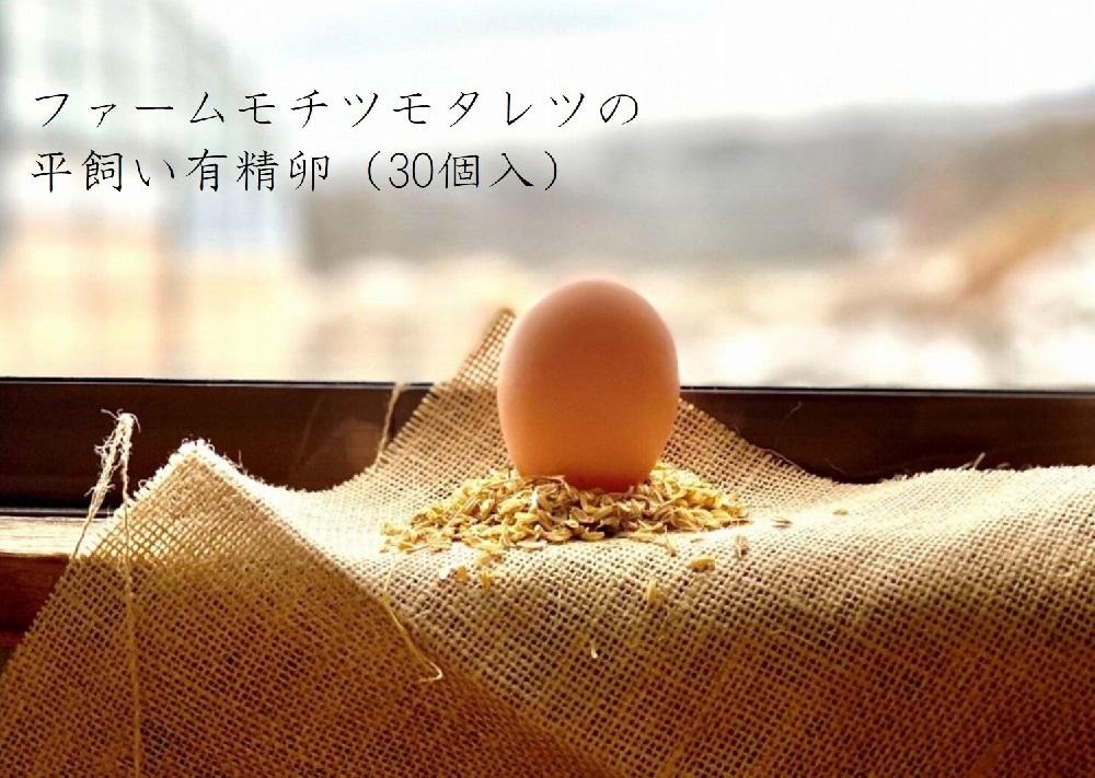 ファームモチツモタレツの平飼い有精卵(30個入)
