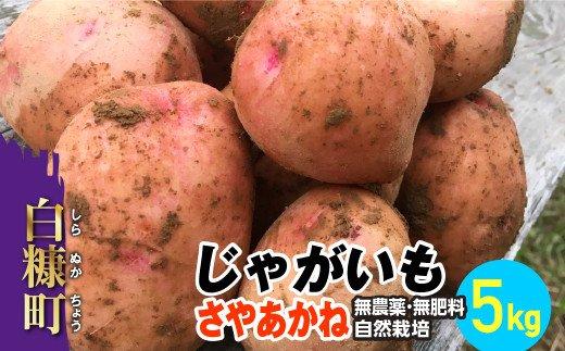 じゃがいも(さやあかね)無農薬・無肥料・自然栽培・北海道産【5kg】