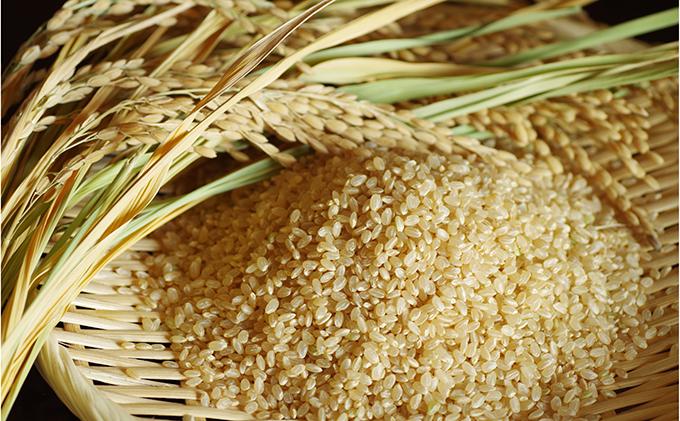 あきたこまち玄米10kg×2袋/計20kg