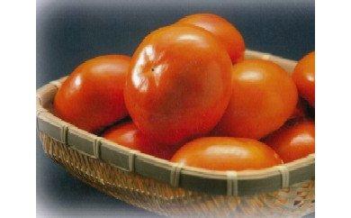 【富有柿の発祥の地 瑞穂市!!】富有柿贈答用4L×18個入り
