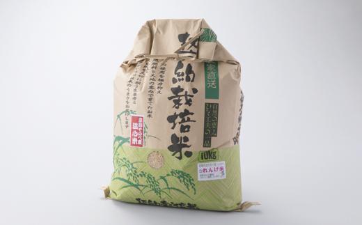016N60 れんげ米コシヒカリ「玄米」10kg[高島屋選定品]