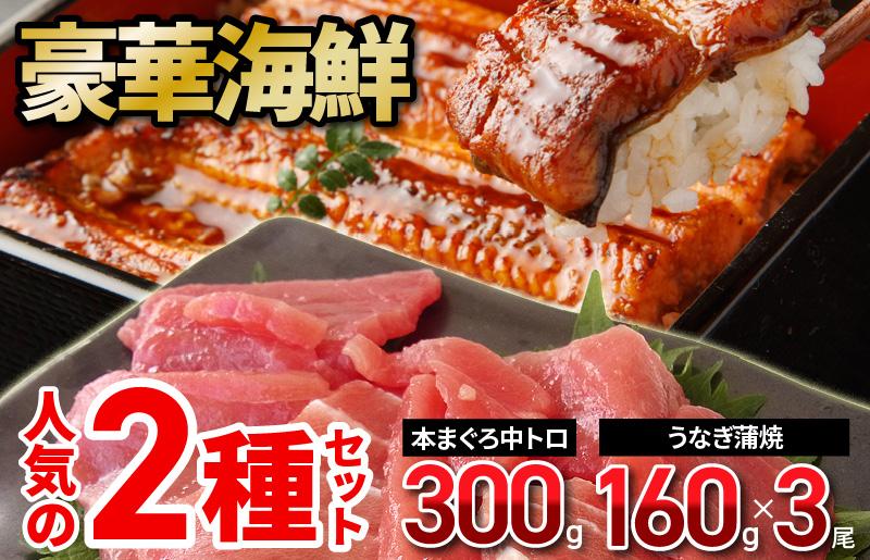099H586 豪華海鮮 人気の2種セット(本まぐろ中トロ・国産うなぎ蒲焼)