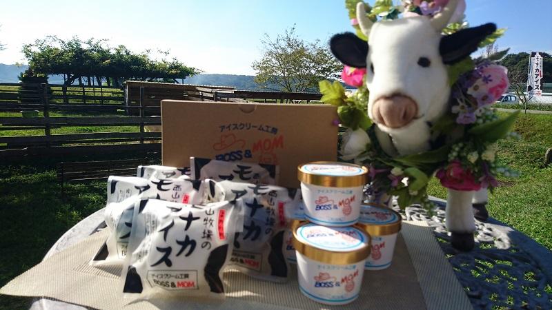 A-24  牧場直営アイスクリーム工房のミルクたっぷりジェラート・もなかセット