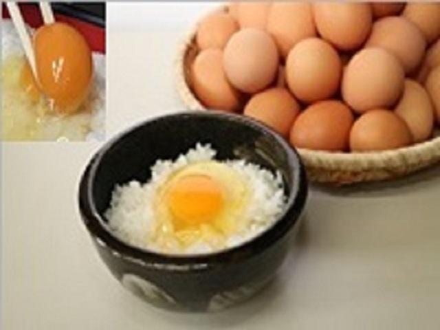 A-36 金田さんちの茜卵5kg(80〜90個)
