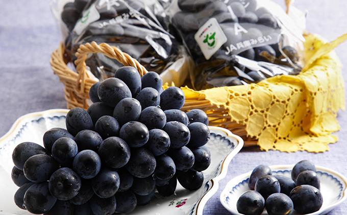 加西ゴールデンベリーA 秀品 ひょうご安心ブランド マスカットベリーA【果物・ぶどう・フルーツ・葡萄】