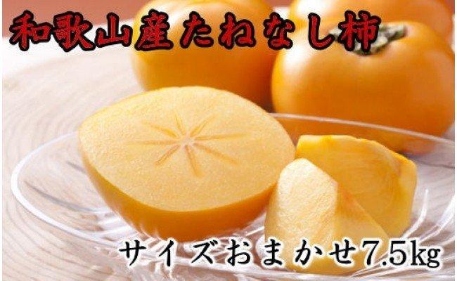 ZD6149_和歌山産たねなし柿(M~2Lサイズおまかせ)約7.5kg