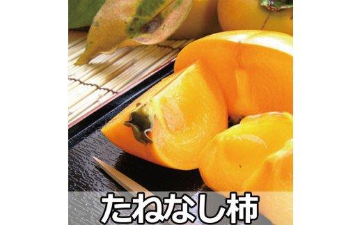 <2021年秋発送>【 県認定エコファーマー】採れたてタネなし脱渋甘柿(刀根早生)Lサイズ7.5kg