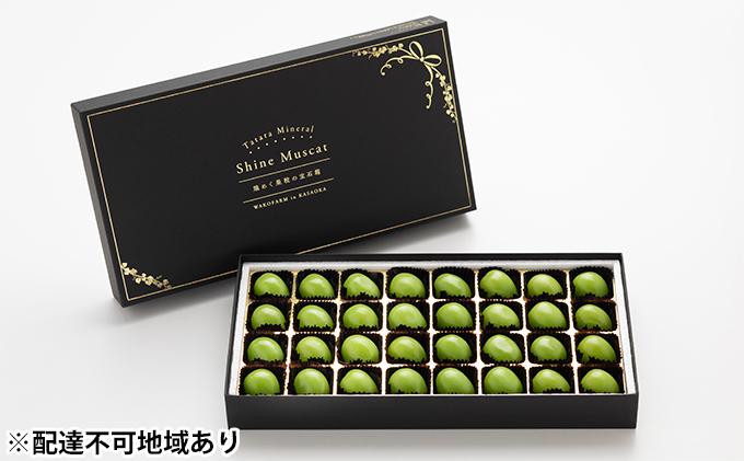 岡山県産 冷温保存 たたらみねらる シャインマスカット 32粒 煌めく果粒の宝石箱