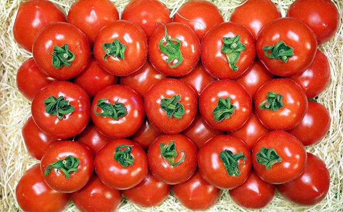 フルーツトマト「星のしずく」900g