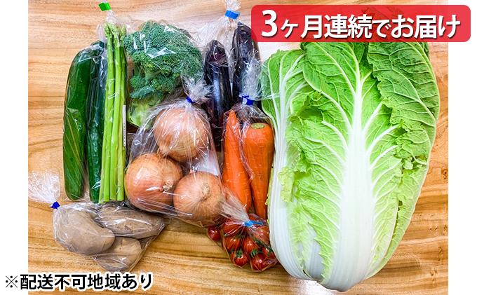 """【定期便3ヶ月】阿波市産野菜""""阿波ベジ""""詰合せセット(6〜8品目)"""