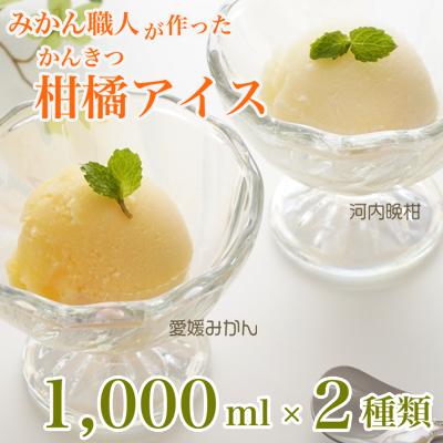 みかん職人が作った柑橘アイス1000ml×2種(愛媛みかん・河内晩柑)