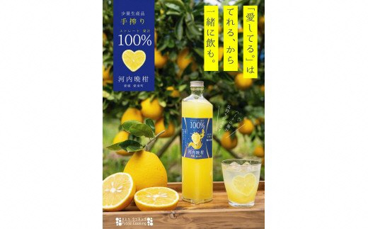 お酒のための極上果汁 河内晩柑ストレートジュース500ml×2本