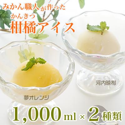 みかん職人が作った柑橘アイス1000ml×2種(夢オレンジ・河内晩柑)