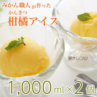 みかん職人が作った柑橘アイス1000ml×2(夢オレンジ×2)