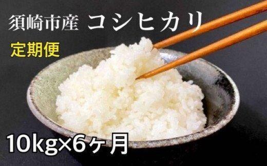 合計60kg【定期便】高知県産コシヒカリ 10kg?6回 NPO12000