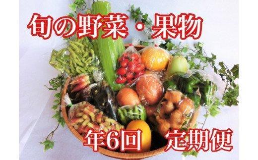 高知県須崎市産 旬の野菜・果物セット 年6回 定期便 ME2000