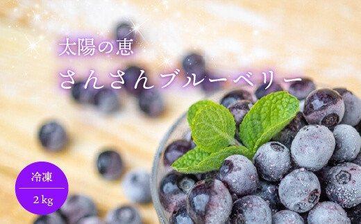 太陽の恵 さんさんブルーベリー【冷凍】2kg IF002