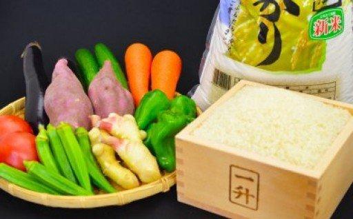 【3ヶ月定期便】とれたて新鮮!旬の朝採れ野菜と高知県産コシヒカリ3kg NPO7000