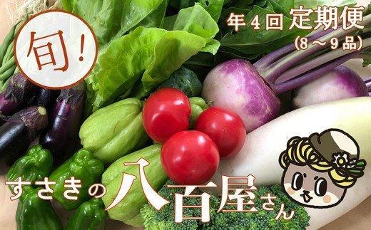 定期便!南国土佐の新鮮お野菜詰め合わせ(8〜9品目 年4回)