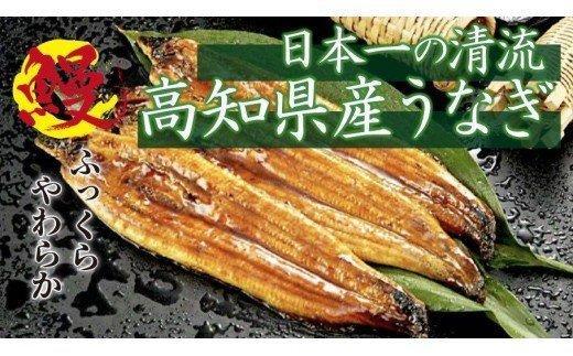 【大人気!】高知県産 うなぎ蒲焼き 100~120g 2尾セット ME030