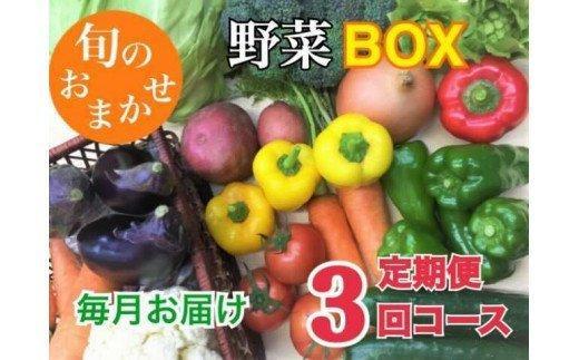 【50セット限定】産地直送!! 旬な野菜のお楽しみ定期便