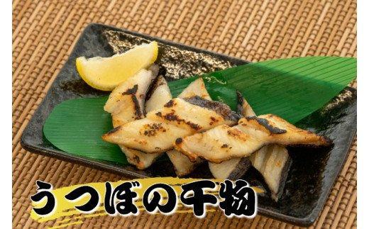 カツオに並ぶ土佐の名物!【訳あり】うつぼの干物  DK007