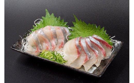 【2021年5月以降発送】幻の高級魚 縞鯵(シマアジ)お刺身セット KS007