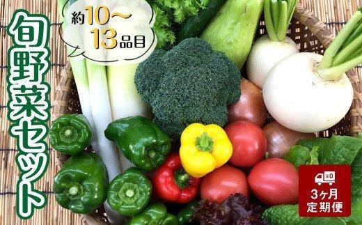 【定期便】 新鮮無農薬!!旬な野菜の詰め合わせセット(13品程度) AWA10000