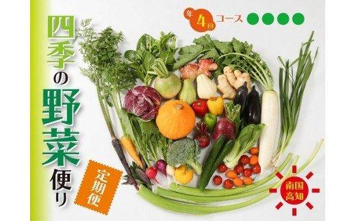 南国高知より 春夏秋冬 四季の野菜便り(年4回コース定期便) HNT2000