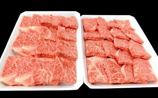 土佐黒毛和牛A5〜A4等級(特撰リブロース肉)霜降り焼肉用800g TM016