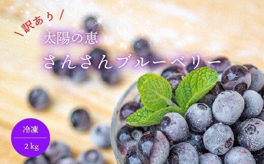 【訳あり】太陽の恵 さんさんブルーベリー【冷凍】2kg IF003