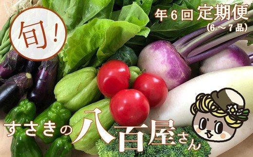 【限定160セット】定期便!南国土佐の新鮮お野菜詰め合わせ (6〜7品目 年6回) NK4000
