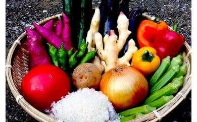 南国土佐の新鮮お野菜とお米セット NK003