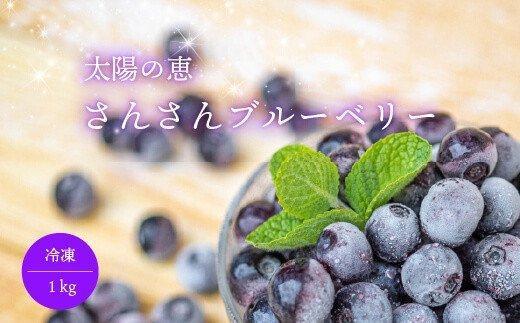 太陽の恵 さんさんブルーベリー【冷凍】1kg IF001