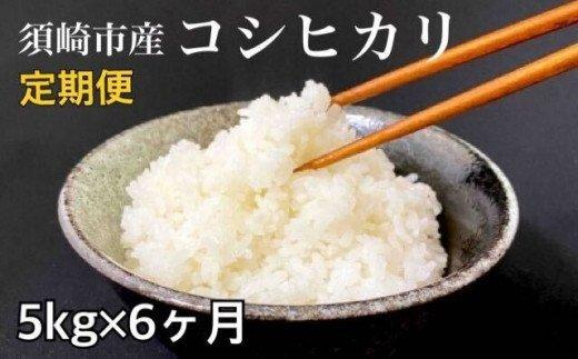 合計30kg!!【定期便】 高知県産コシヒカリ 5kg?6回 NPO11000