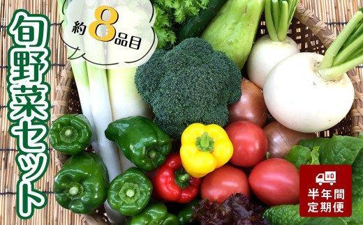 あわ地区【6か月定期便】 旬な野菜の詰め合わせセット(8品程度)毎月お届け(半年間)AWA4000