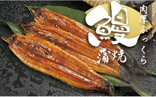 高知県産 うなぎ蒲焼き 100〜120g 20尾セット ME029