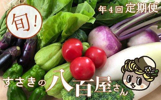 【限定150セット】定期便!南国土佐の新鮮お野菜詰め合わせ(7〜8品目 年4回) NK6000