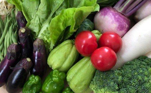 「2人暮らし」にぴったり 南国土佐のお野菜「食べきりサイズ」 NK002