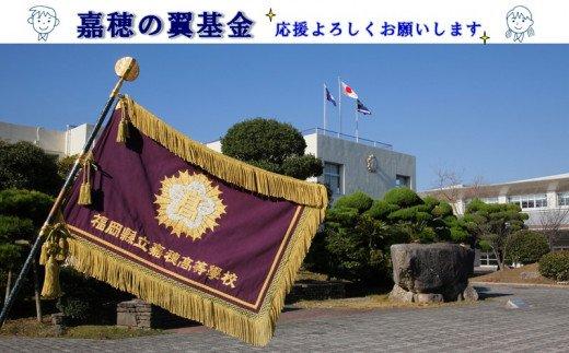 【E-062】【協賛型返礼品】嘉穂の翼基金を応援!