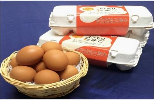 【A7-027】養鶏場直送!松浦の赤たまご(40個)