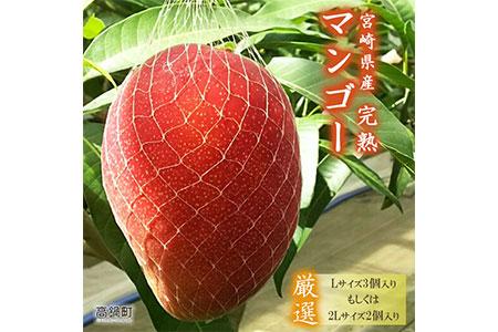 <宮崎県産完熟マンゴー(Lサイズ3個 or 2Lサイズ2個)>2021年6月初旬〜9月初旬迄に順次出荷