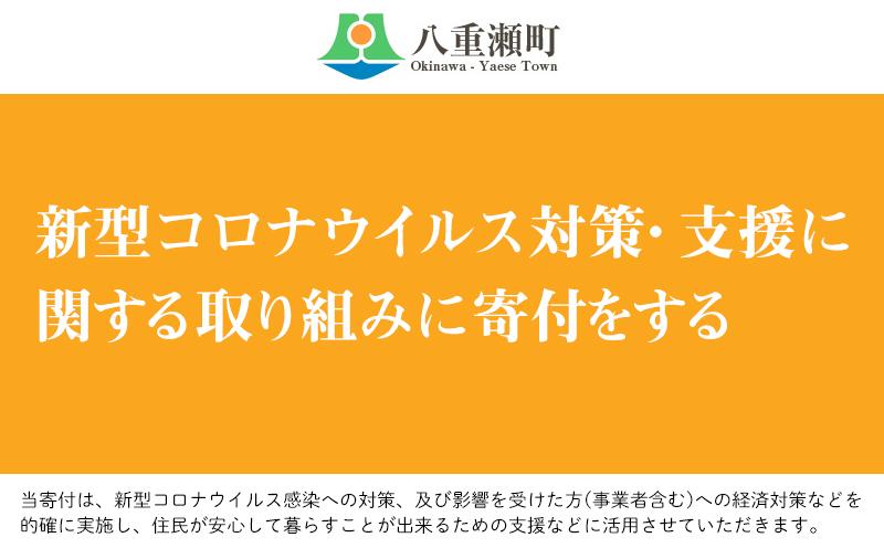 新型コロナウイルス対策・支援に関する取り組みに寄付をする(1万円)