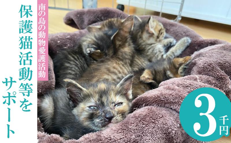 【南の島の動物愛護活動】保護猫活動等をサポート(3千円)