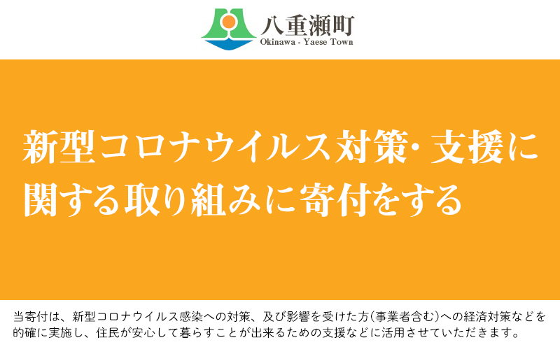 新型コロナウイルス対策・支援に関する取り組みに寄付をする(10万円)