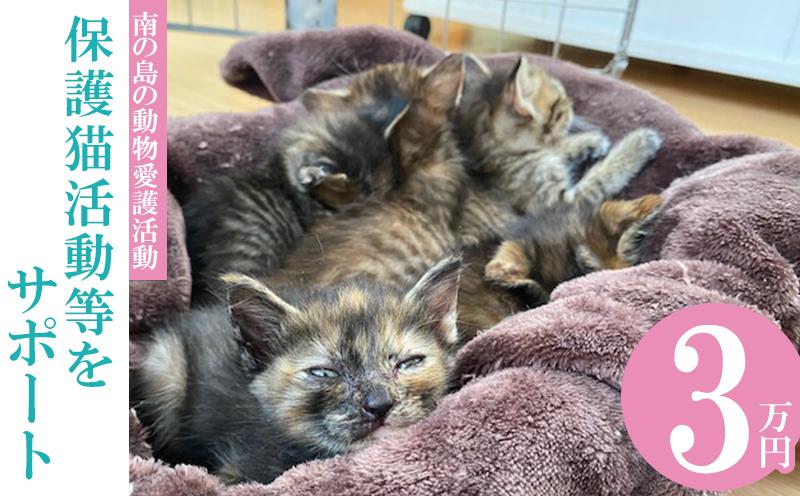 【南の島の動物愛護活動】保護猫活動等をサポート(3万円)